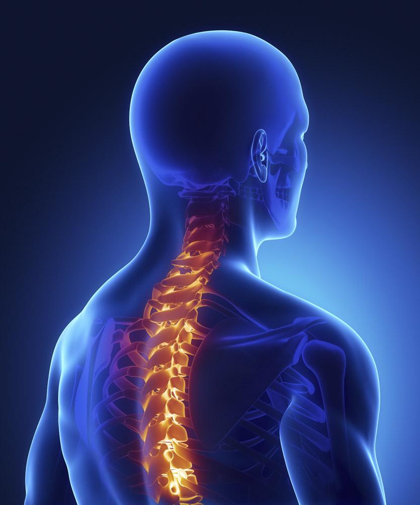 颈椎使用说明书