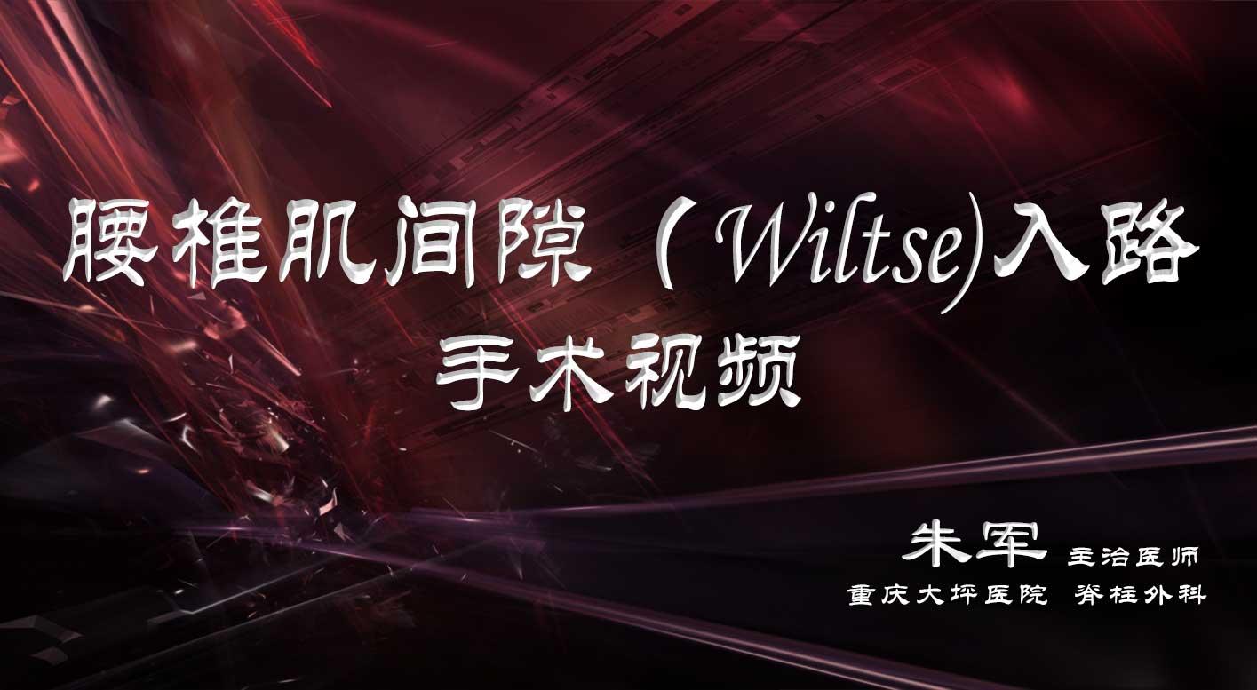 <b>手术视频—腰椎肌间隙(Wiltse)入路</b>