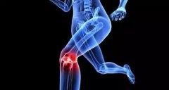 如何保护膝关节!